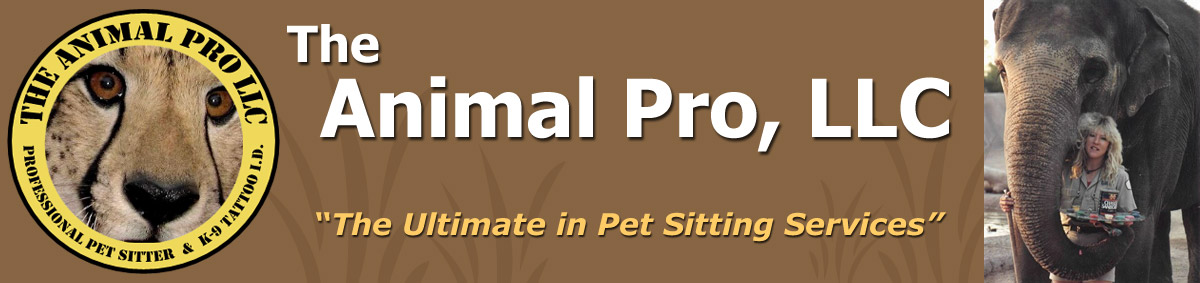 The Animal Pro, LLC